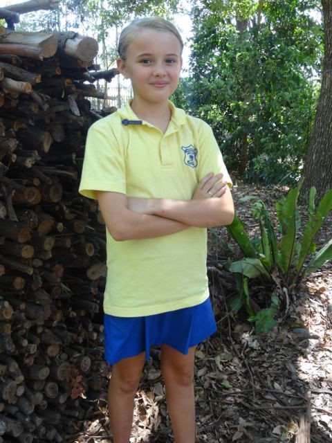 Girls summer skort uniform
